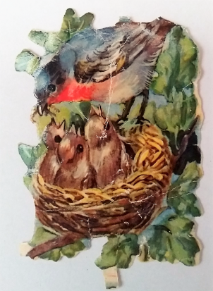 Bokmärke-fågelbo